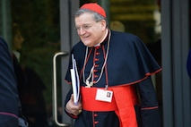 Cardinal Burke Synod
